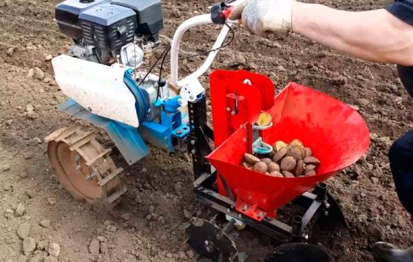 Посадка картофеля мотоблоком Нева или Салют